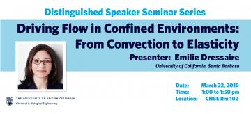 Distinguished Speaker Seminar – Professor Emilie Dressaire